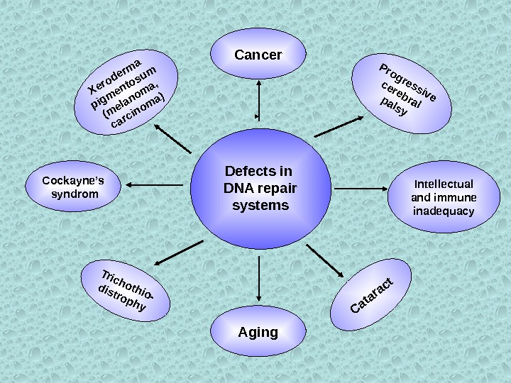 Defects in DNA repair systems Cancer Aging. Cataract Progressive cerebralpalsy Intellectual and immune inadequacy. Cockayne's