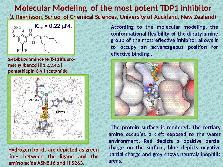 Molecular Modeling of the most potent TDP 1 inhibitor (J. Reynisson, School of Chemical Sciences, University
