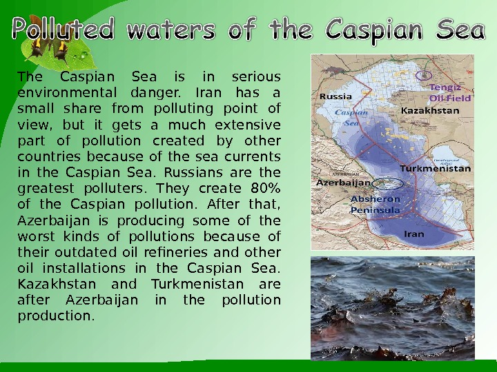 The Caspian Sea is in serious environmental danger.  Iran has a small share from polluting