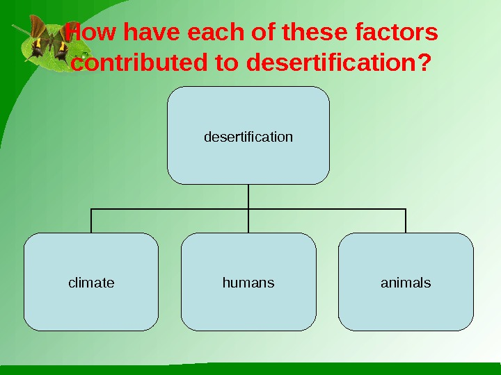 How have each of these factors contributed to desertification? desertification climate humans animals