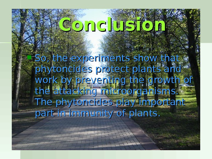 So, the experiments show that phytoncides protect plants and  work by preventing the