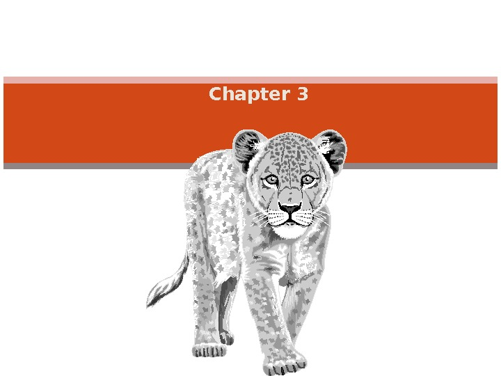 Chapter 3 ECOSYSTEM ECOLOGY Energy flow throuth ecosystem