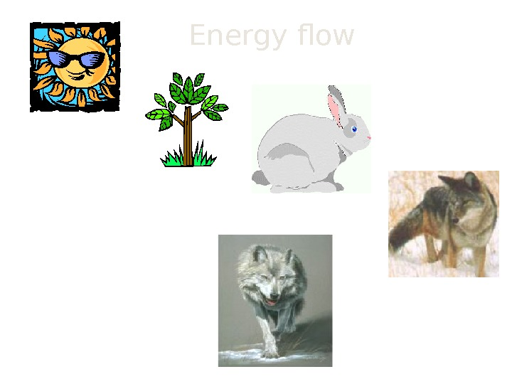Energy flow Today we will explore some of the multiple topics related to the flow of