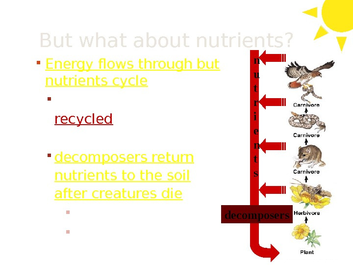 But what about nutrients?  Energy flows through but nutrients cycle nutrients must be recycled to