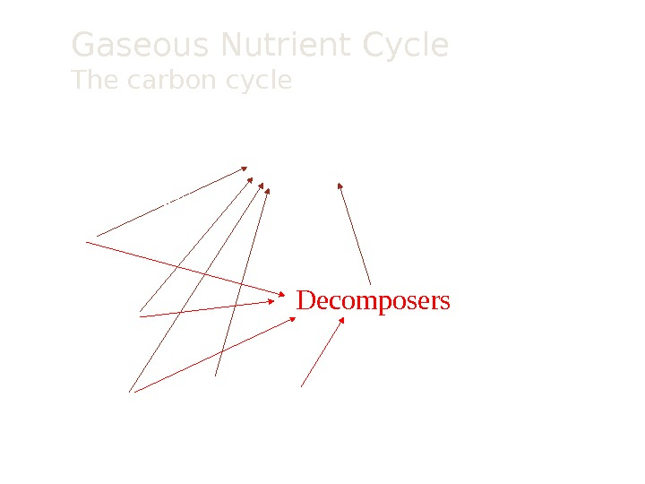 Gaseous Nutrient Cycle The carbon cycle CO 2 plant herbivore carnivore top carnivore Respiration Decomposers(photosynthesis)
