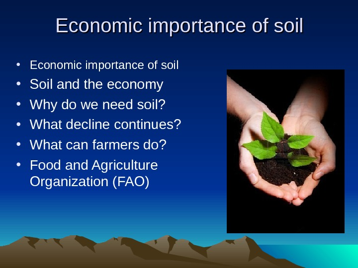 Economic importance of soil • Soil and the economy • Why do we need soil?