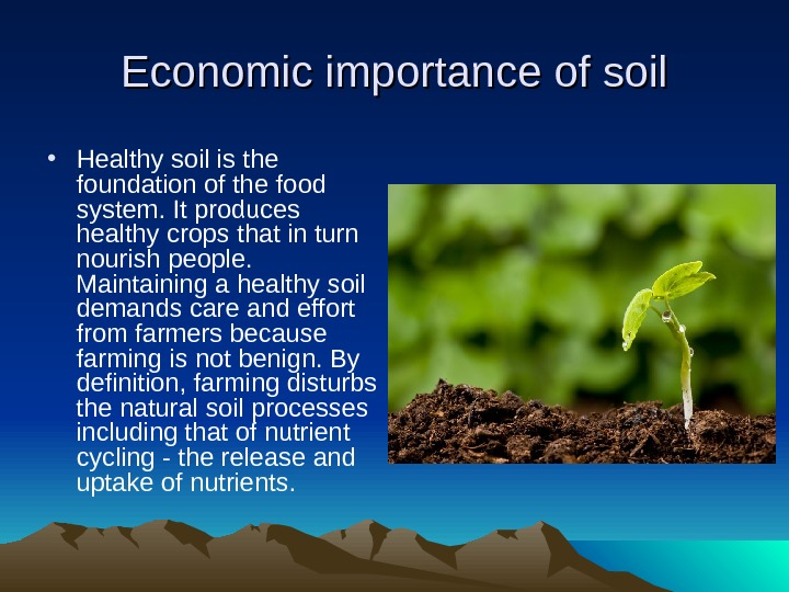 Economic importance of soil • Healthy soil is the foundation of the food system. It produces