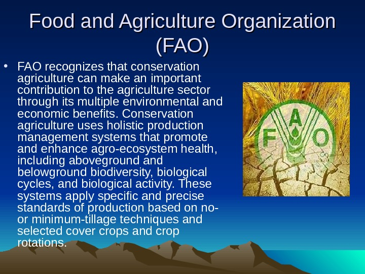 Food and Agriculture Organization (FAO) • FAO recognizes that conservation agriculture can make an important contribution