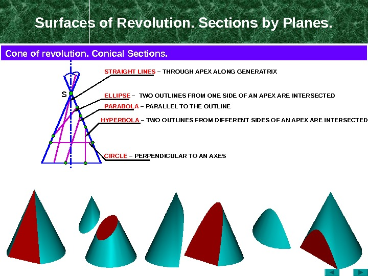 Surfaces of Revolution. Sections by Planes. S ELLIPSE  –  TWO OUTLINES FROM ONE SIDE