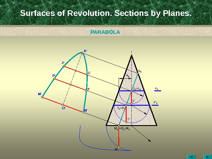 Surfaces of Revolution. Sections by Planes. O ' M 2 =N 2=O 2 M 'M '