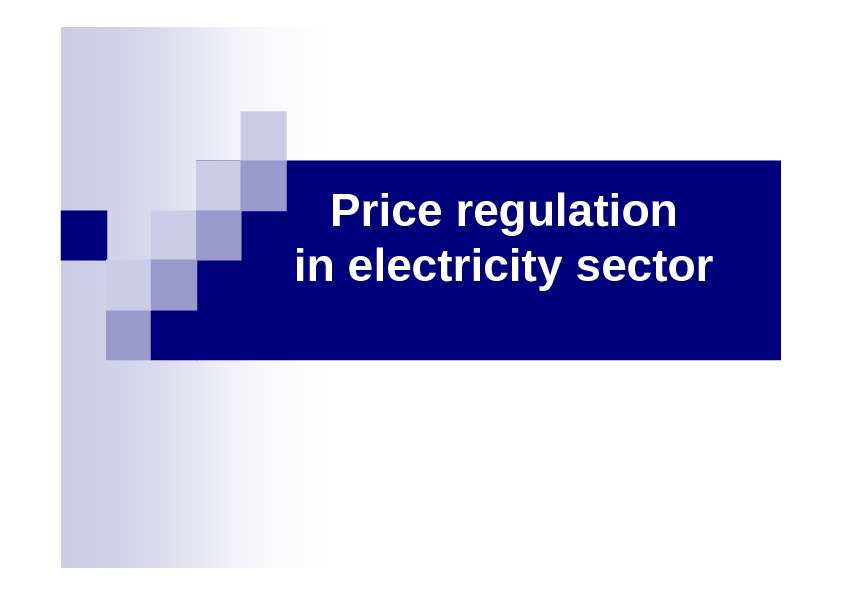 Price regulation in electricity sector