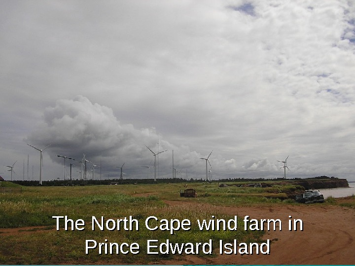 The North Cape wind farm in Prince Edward Island