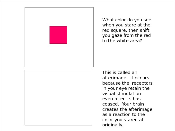 What color do you see when you stare at the red square, then shift