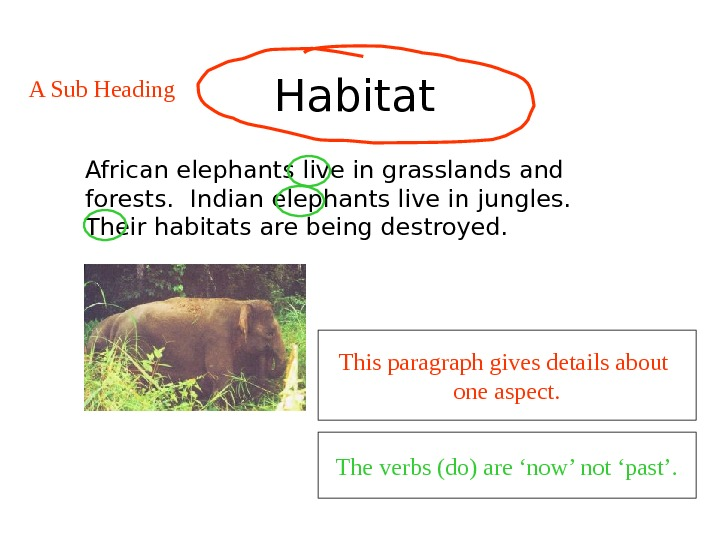 Habitat  African elephants live in grasslands and forests.  Indian elephants live in