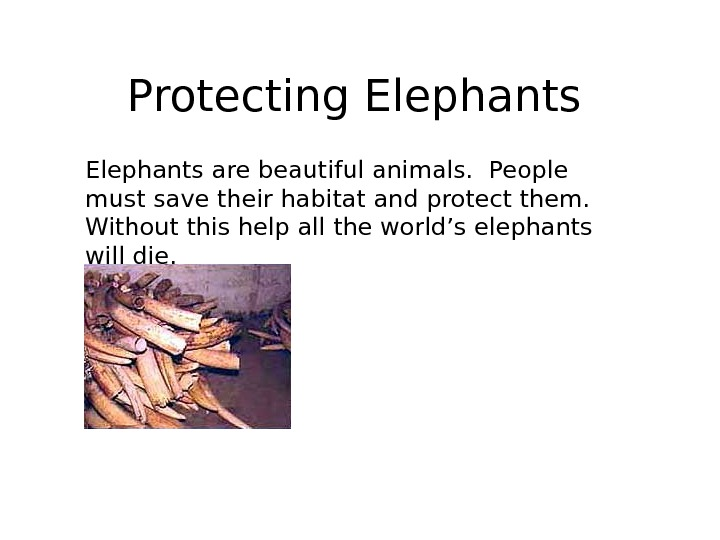 Protecting Elephants are beautiful animals.  People must save their habitat and protect them.