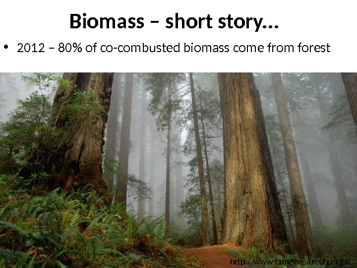 http: //www. ramones. freehost. pl/Biomass – short story. . .  • 2012 – 80 of
