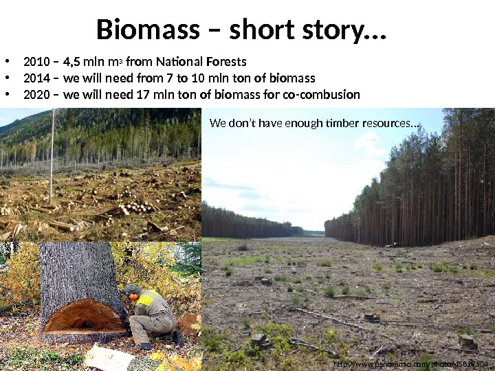 Biomass – short story. . .  • 2010 – 4, 5 mln m 3 from