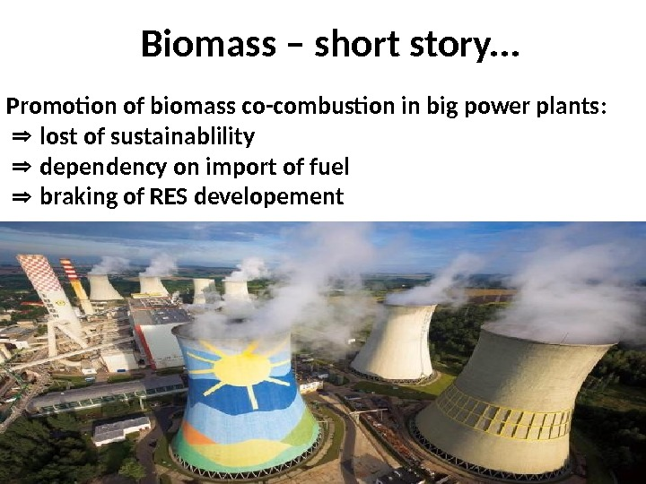 Biomass – short story. . . Promotion of biomass co-combustion in big power plants:  lost