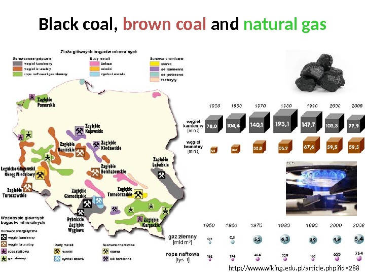Black coal,  brown coal and natural gas http: //www. wiking. edu. pl/article. php? id=288