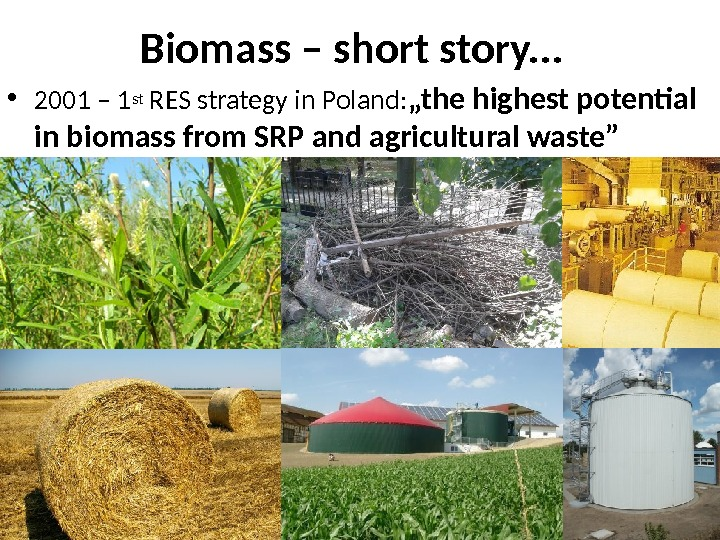 Biomass – short story. . .  • 2001 – 1 st RES strategy in Poland: