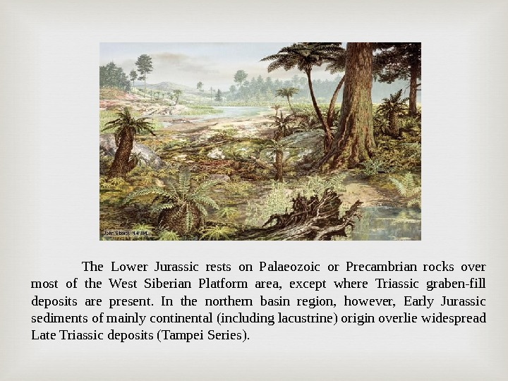 The Lower Jurassic rests on Palaeozoic or Precambrian rocks over most of the West Siberian Platform