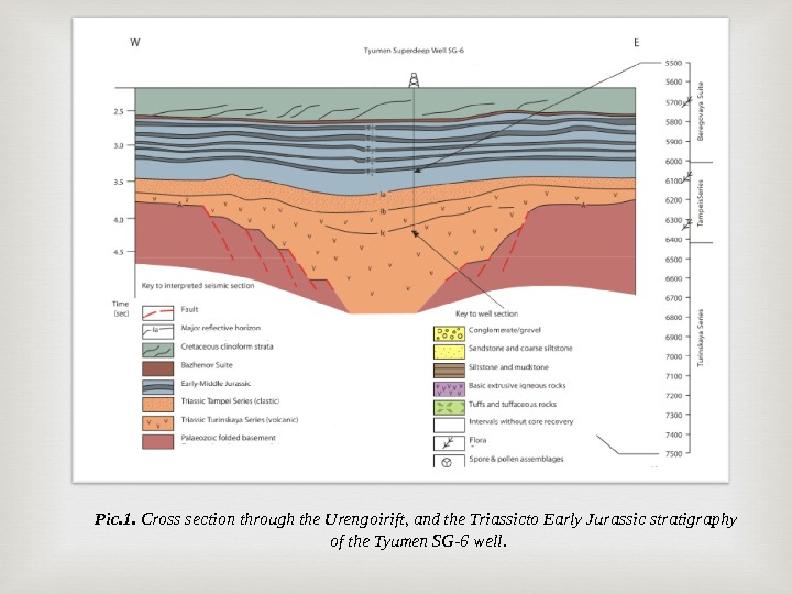 Pic. 1.  Cross section through the Urengoirift, and the Triassicto Early Jurassic stratigraphy of the