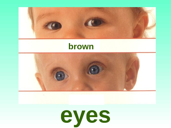 eyes brown