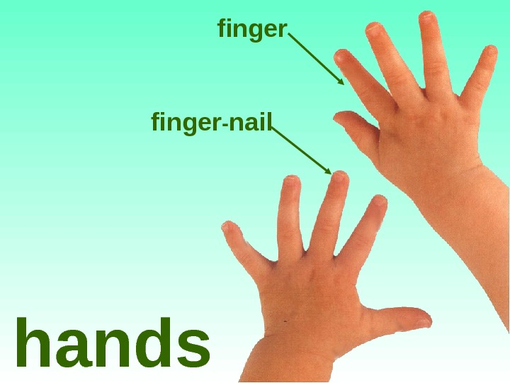 finger - nail hands