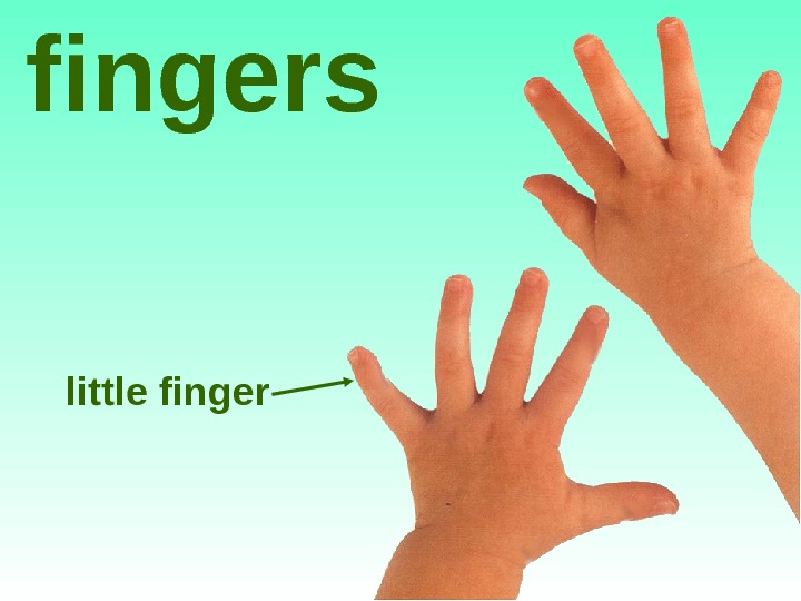 little fingers