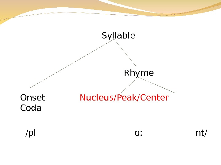 Syllable Rhyme Onset Nucleus/Peak/Center Coda  /pl  ɑː   nt/