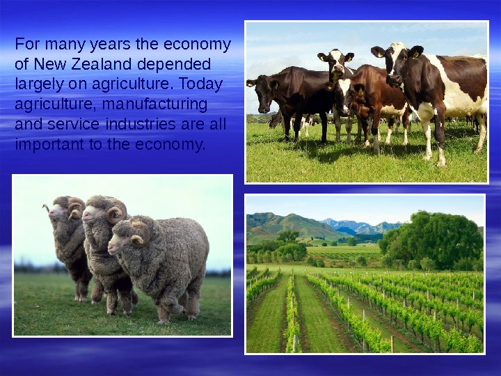 For many years the economy of New Zealand  depended largely on agriculture. Today agriculture, manufacturing