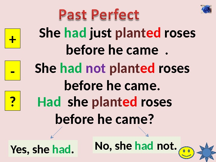 She had just plant ed roses before he came . + - ? She had