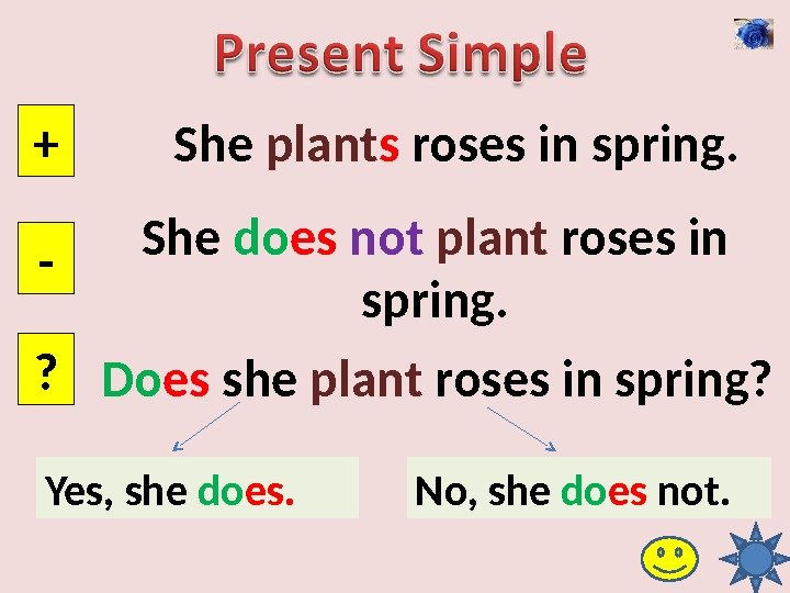 She plant s roses in spring. + - ? She do es  not  plant