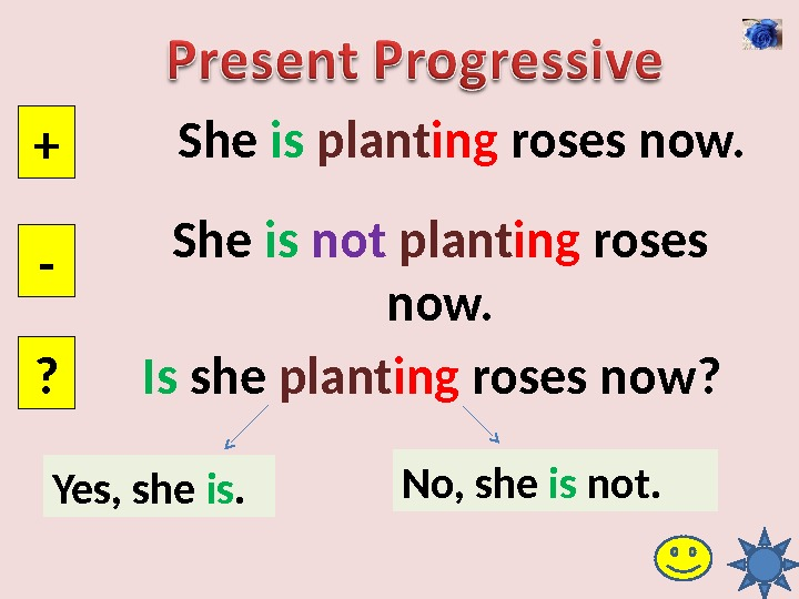 She is  plant ing roses now. + - ? She is  not  plant