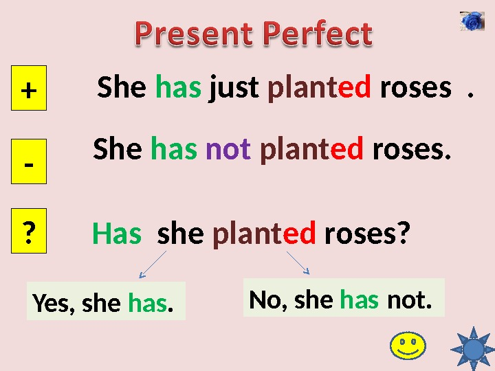She has just plant ed roses . + - ? She has  not  plant