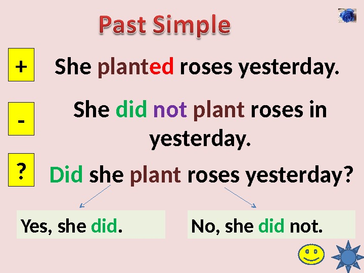 She plant ed roses yesterday. + - ? She did  not  plant roses in