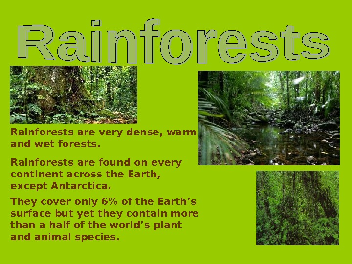 Rainforests are very dense, warm and wet forests. Rainforests are found on every continent across the