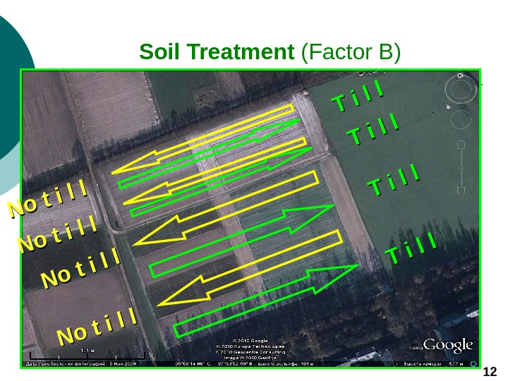 Soil Treatment (Factor B) 12 T i l l T