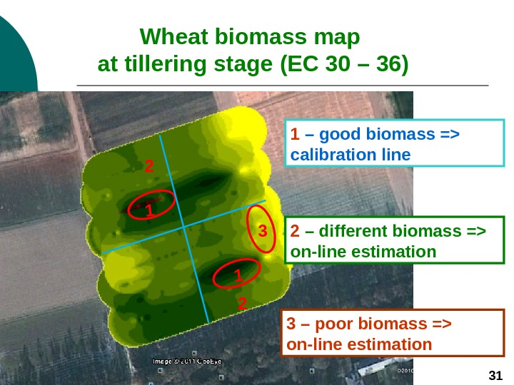 Wheat biomass map at tillering stage  (ЕС 30 – 36)1 2 3 1
