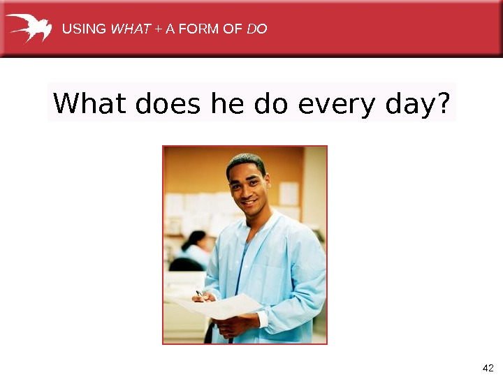 42 What does he do every day? USING WHAT +AFORMOF DO