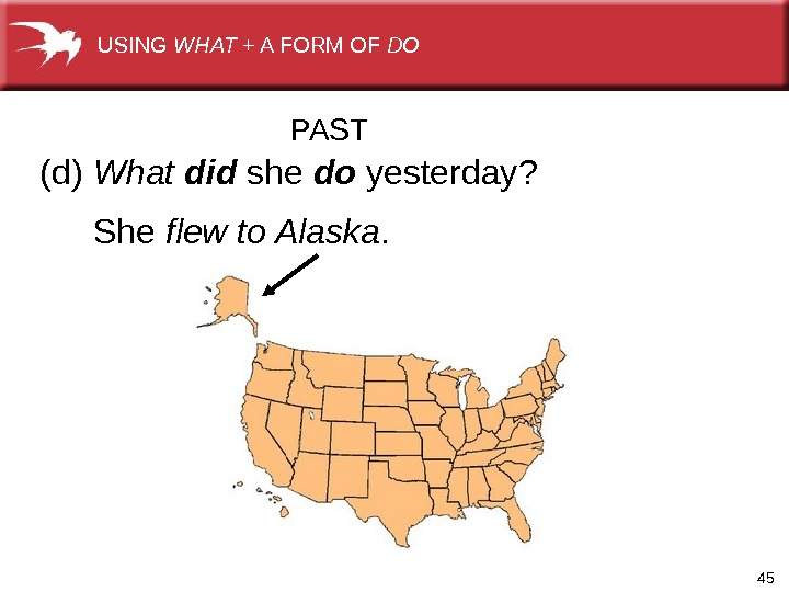 45(d) What did  she  do yesterday? She flew to Alaska. PASTUSING WHAT +AFORMOF DO