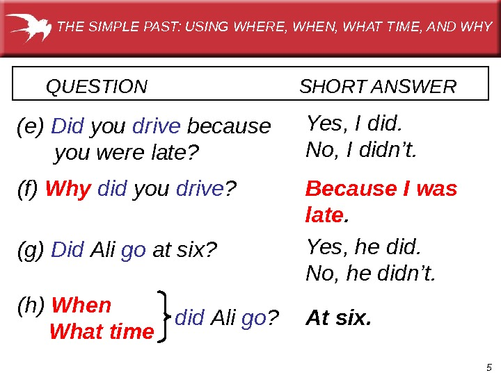 5 QUESTION      SHORT ANSWER  (e) Did  you drive because