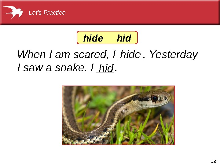 44 When I am scared, I ____. Yesterday I saw a snake. I ___.  Let's