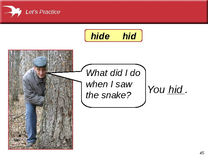 45 Let's Practice What did I do when I saw the snake? You ___. hidhide hid