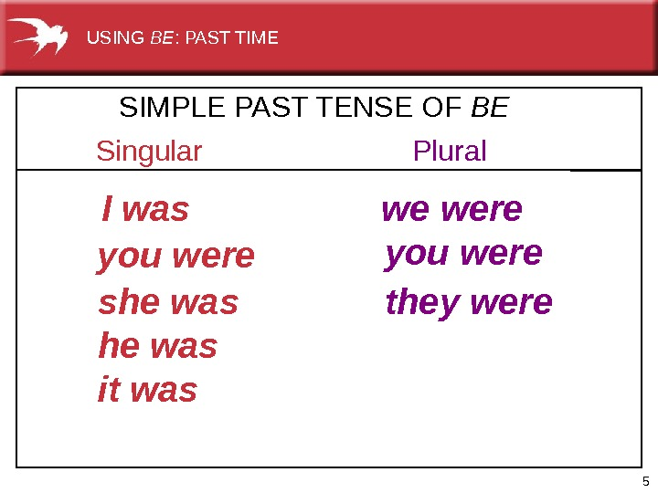 5 Singular Plural I was  we were you were she was it was they were.