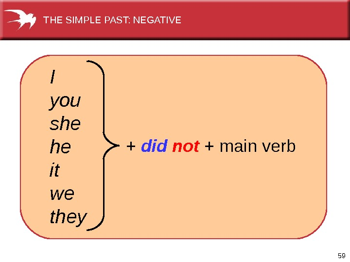 59  I you she he it we they + did not + main verb. THE