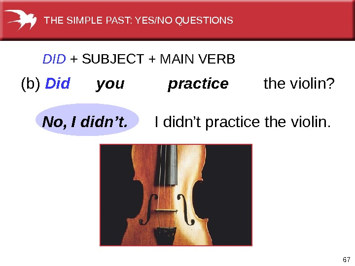 67(b) Did  you  practice   the violin?  DID  +  SUBJECT