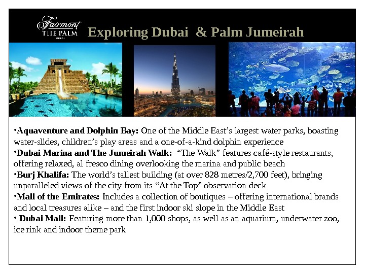 Exploring Dubai & Palm Jumeirah • Aquaventure and Dolphin Bay:  One of the Middle East's
