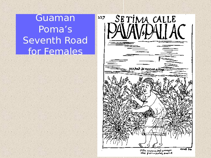 Guaman Poma's Seventh Road for Females