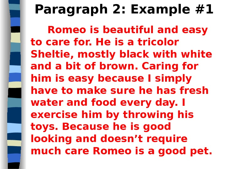 Paragraph 2: Example #1 Romeo is beautiful and easy to care for. He is a tricolor